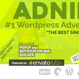 Adning Advertising - Professional, All In One Ad Manager for Wordpress Latest Version Download