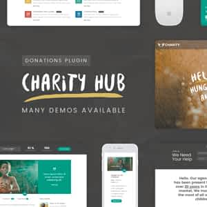 [Download] Charity Foundation - Charity Hub Wordpress Theme